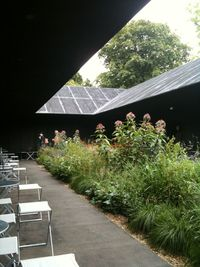 Serpentine Gallery Pavillon